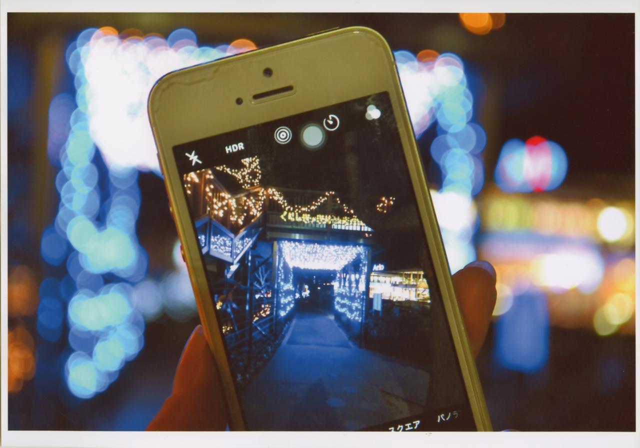 画像: 撮影位置を工夫しよう タイトル「光の散歩道と」