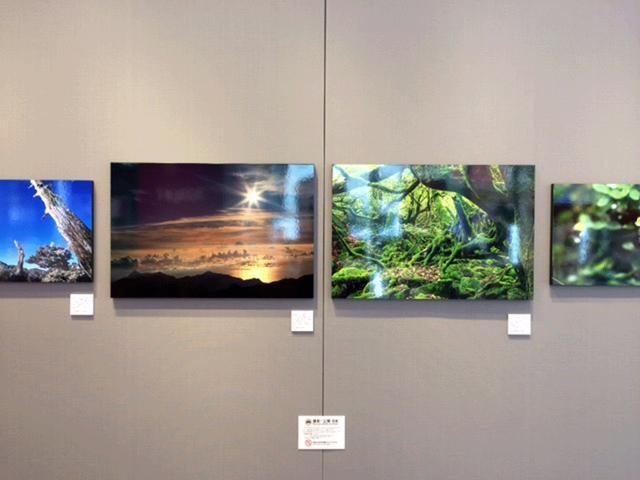 画像2: 秦 達夫写真展『Rainy Days 屋久島』は、富士フイルムフォトサロンにて本日25日より始まりました。