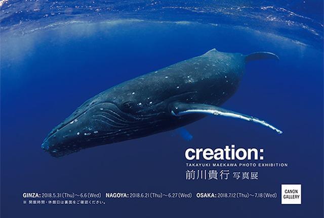 画像: キヤノン:キヤノンギャラリー|前川 貴行 写真展:「creation:」