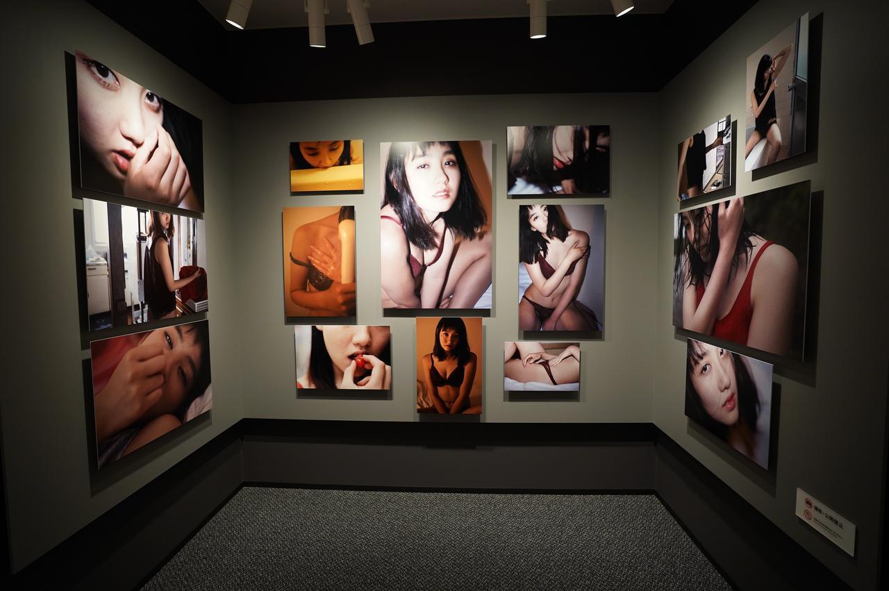 画像2: 今回の展示作品の一部より