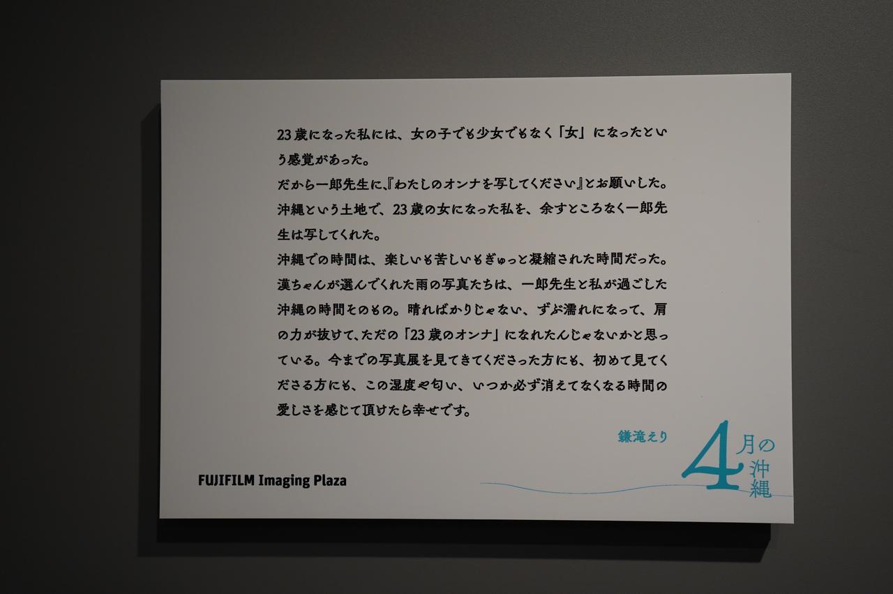 画像3: 今回の展示作品の一部より