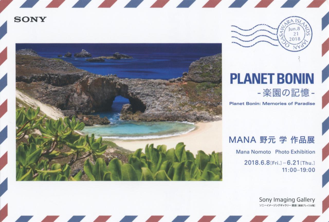 画像6: MANA 野元 学「PLANET BONIN – 楽園の記憶 -」 ●ソニーイメージングギャラリー銀座●6月8日~21日