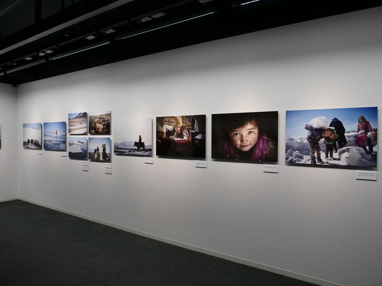 画像2: 展示作品の様子