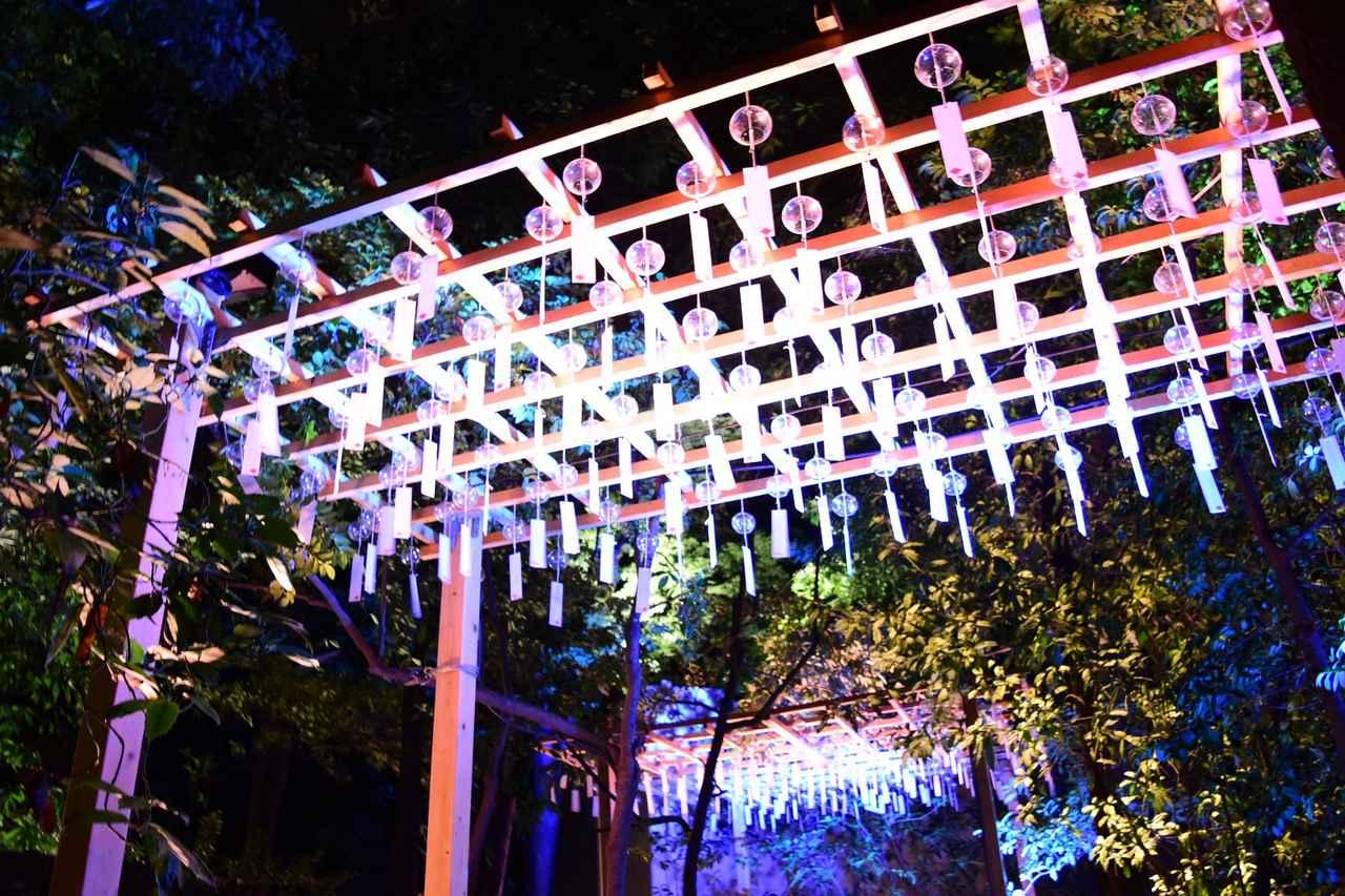 画像: 2000個以上の風鈴の音色が響く、 川越氷川神 社縁むすび風鈴 開催中