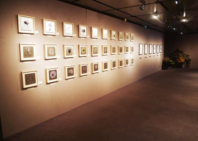 画像: 織作峰子展『恒久と遷移の美を求めて』開催中。アクリルに金箔やプラチナ箔を施し、そこに写真を焼き付けた独特の風合いをお楽しみください。
