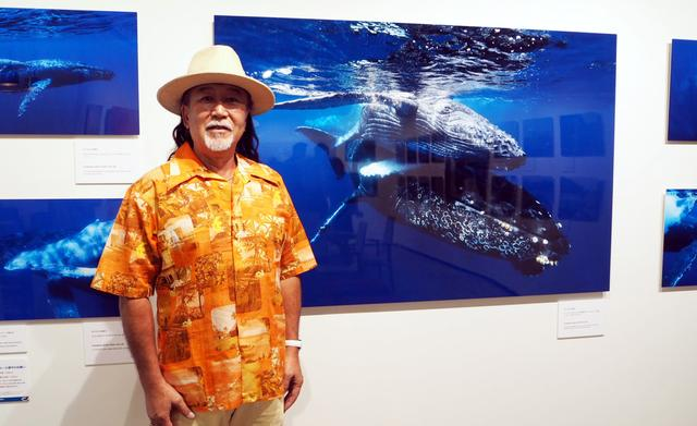 画像: 約25年間に渡り、小笠原諸島の美しい自然や貴重な固有の動植物、野生のイルカ・クジラの撮影を続け、雑誌やテレビなどで精力的に作品を発表している。また、小笠原諸島での各種ガイド資格も取得しており、様々なことに精通している。