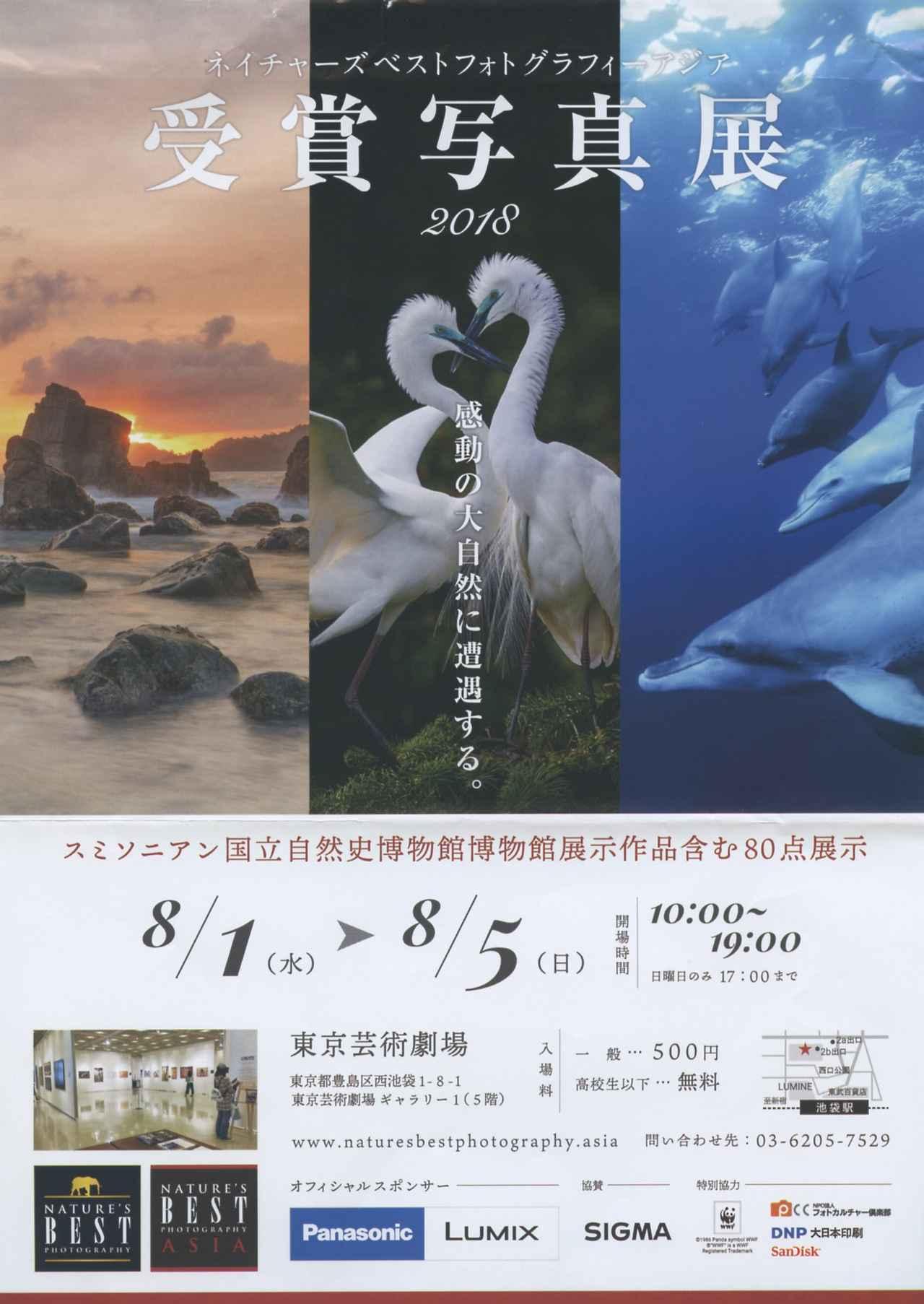 画像1: naturesbestphotography.asia