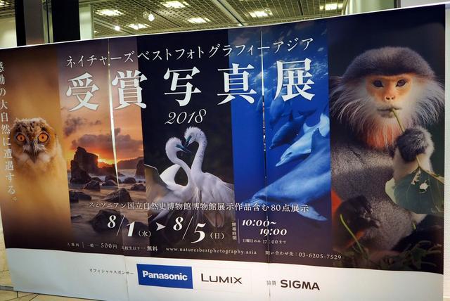 画像: 東京芸術劇場5Fにあるギャラリー1にて開催中。見応えRのある写真展だ。 www.geigeki.jp