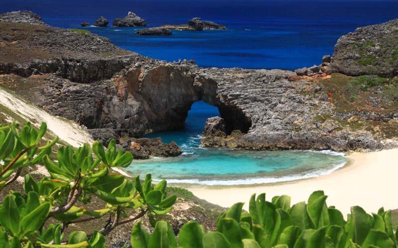 画像: 野元写真事務所 世界自然遺産・小笠原諸島