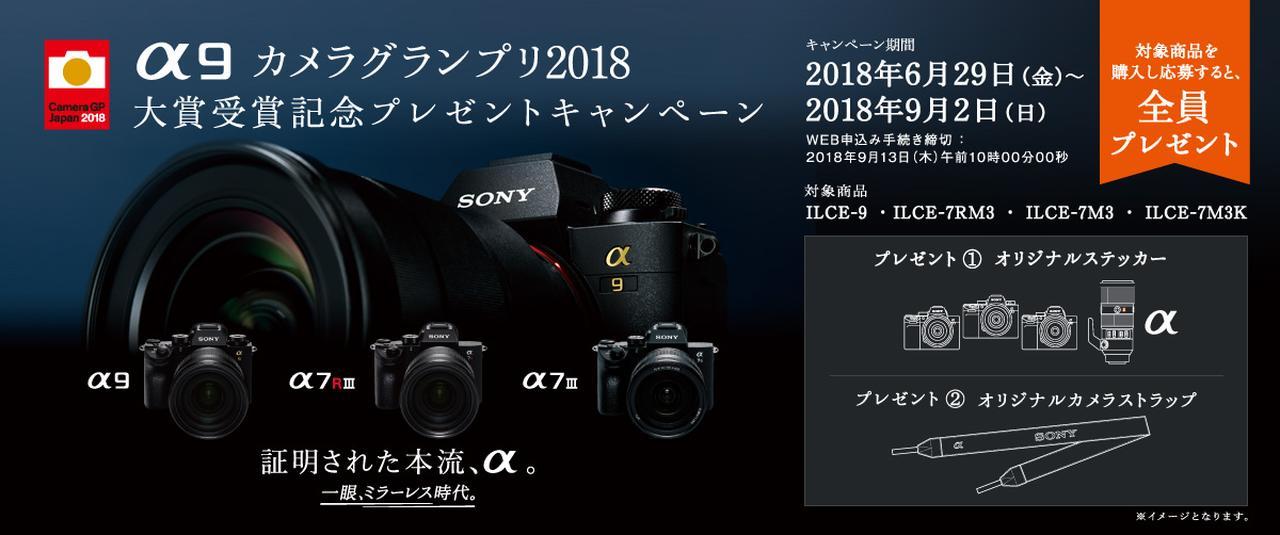 画像: α9 カメラグランプリ2018大賞受賞記念キャンペーン | ソニー