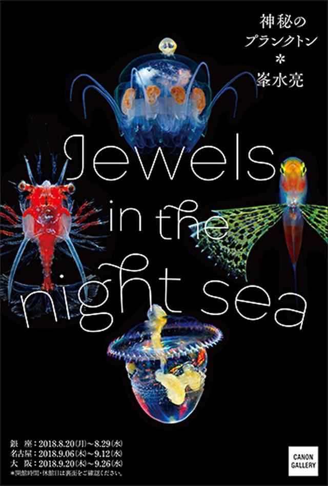 画像: キヤノン:キヤノンギャラリー|峯水 亮 写真展:Jewels in the night sea 神秘のプランクトン