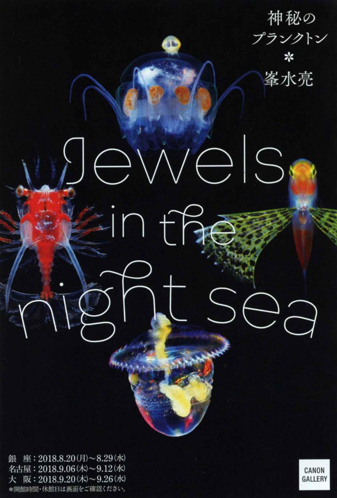 画像2: 峯水 亮 写真展「Jewels in the night sea 神秘のプランクトン」 ●開催中~2018年8月29日(水) キヤノンギャラリー銀座