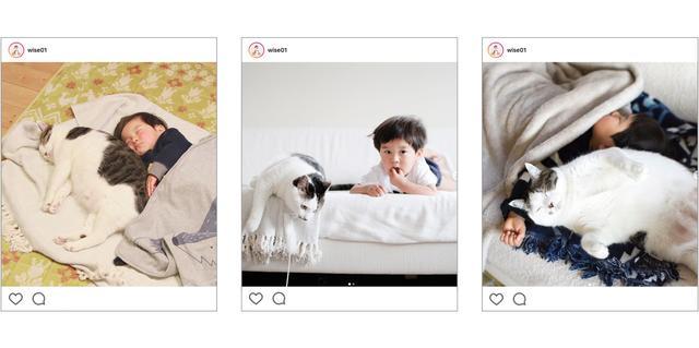 画像: SNS Literacy「ネコとこども、というデザイン 」、鈴木賢一さん