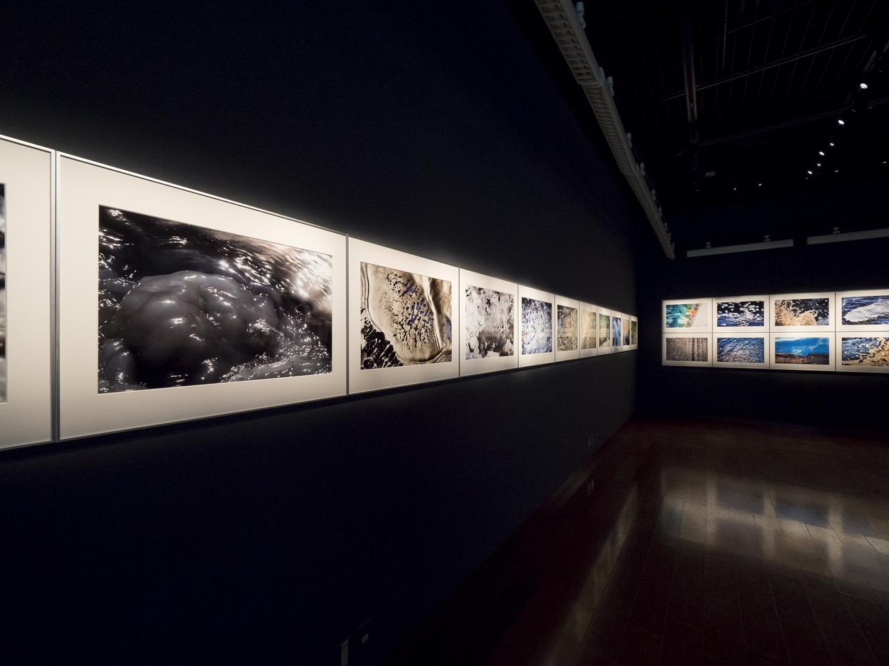 画像: 秋田県を流れる玉川のさまざまな表情を捉えた写真展。