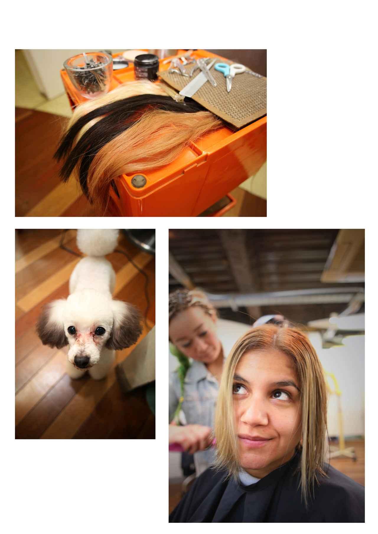 画像2: 博多美人のヒミツはレベルの高い美容師さんにアリ??