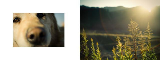 画像4: 河野鉄平、コムロミホ、鈴木さや香、福井麻衣子、4人のグループ展「 Hello! Hello! Me! 」 ●2018年12月12日~12月23日  会場:T.I.P 72Gallery
