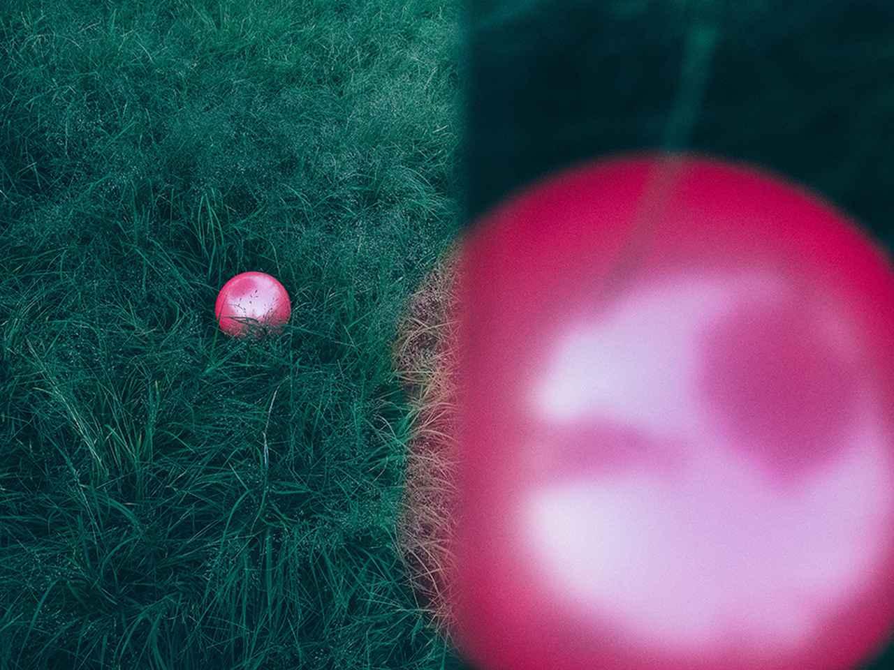 画像6: 河野鉄平、コムロミホ、鈴木さや香、福井麻衣子、4人のグループ展「 Hello! Hello! Me! 」 ●2018年12月12日~12月23日  会場:T.I.P 72Gallery