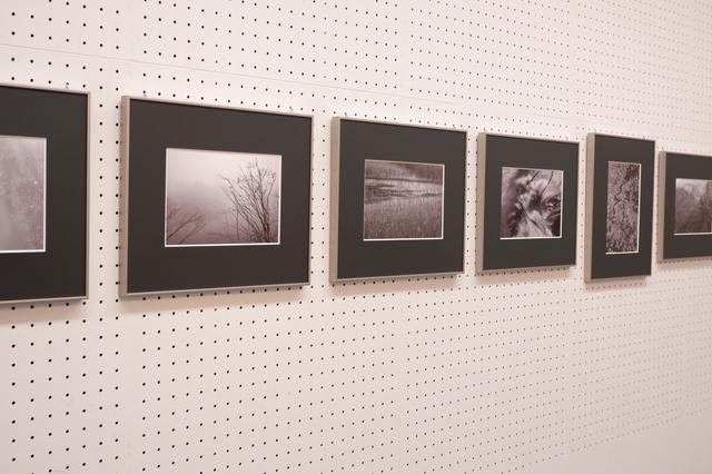 画像2: 敏龍彦写真展「水景色」 ~12月16日まで 埼玉県立近代美術館