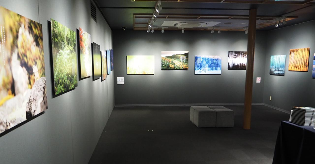 画像1: 米 美知子写真展「詩的憧憬」 ●開催中〜2019年1月23日 (水) 於:ポートレートギャラリー