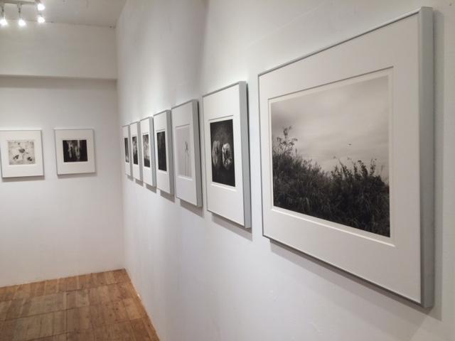 画像1: 千代田路子写真展『幾へにも-ふたつの旅ひとつの物語』は6日間だけの短期開催です。独特の作風と和紙への情感溢れるプリントが鑑賞者を魅了します。