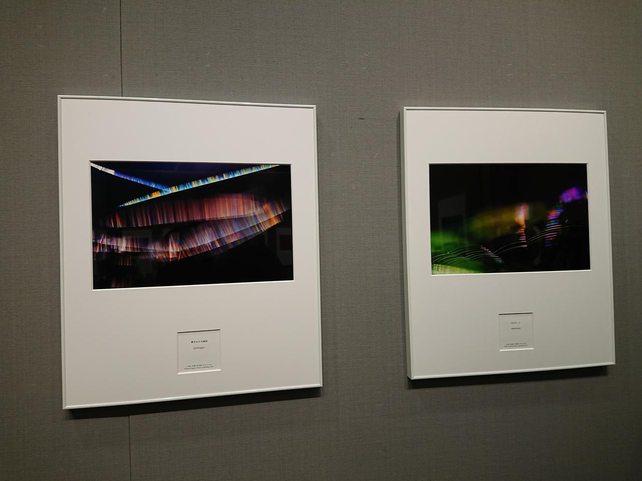 画像2: 江口慎一 写真展「風の詩集」 ●開催中~2019年2月21日(木) 於:富士フイルムフォトサロン 東京 スペース1