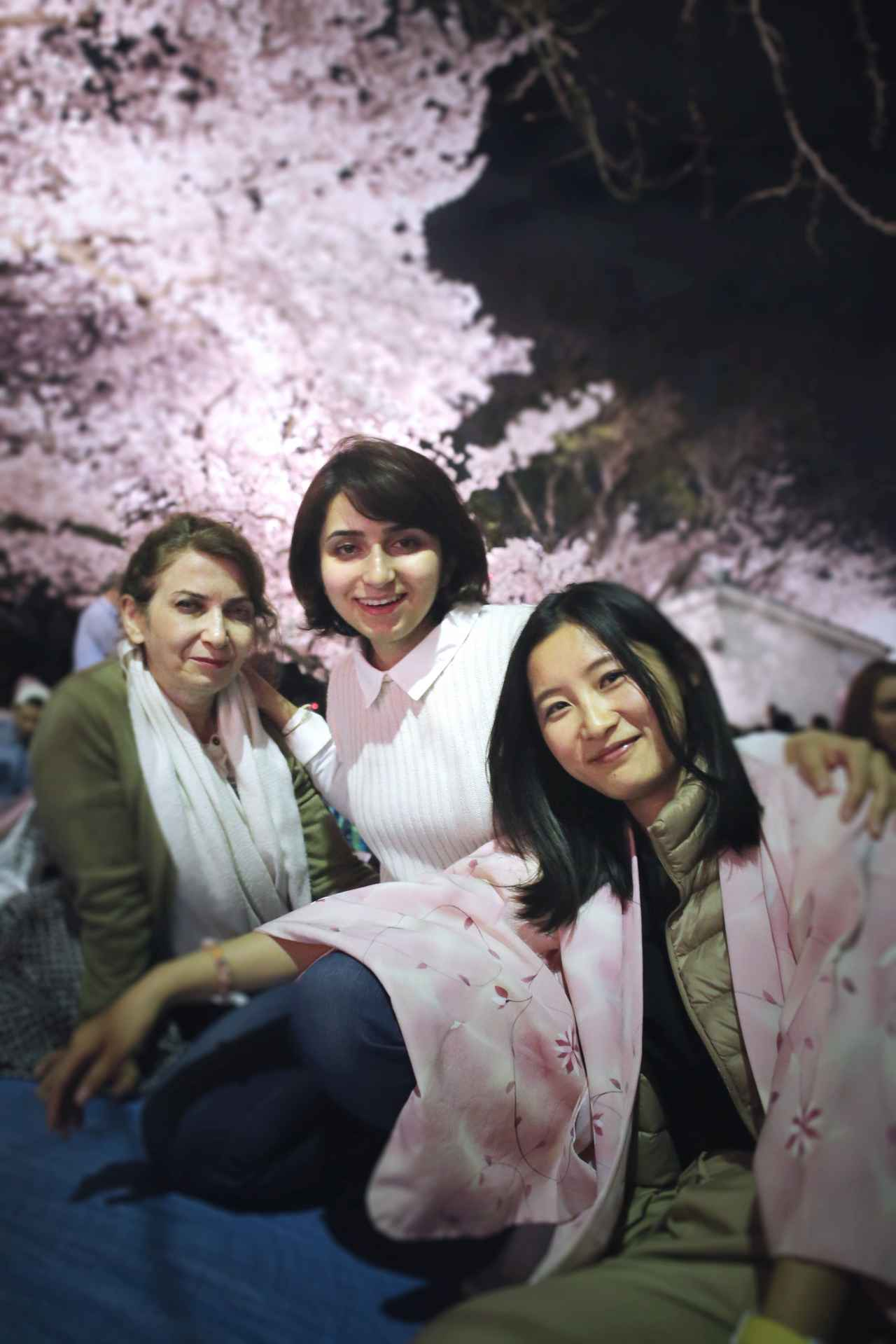 画像: オススメの撮影スポットその3〜夜桜