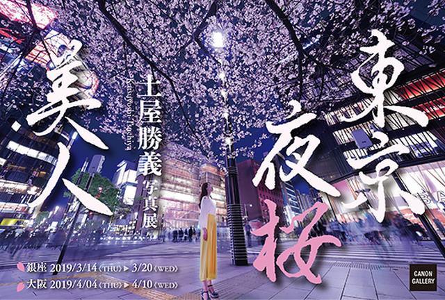 画像: キヤノン:キヤノンギャラリー|土屋 勝義 写真展:東京夜桜美人