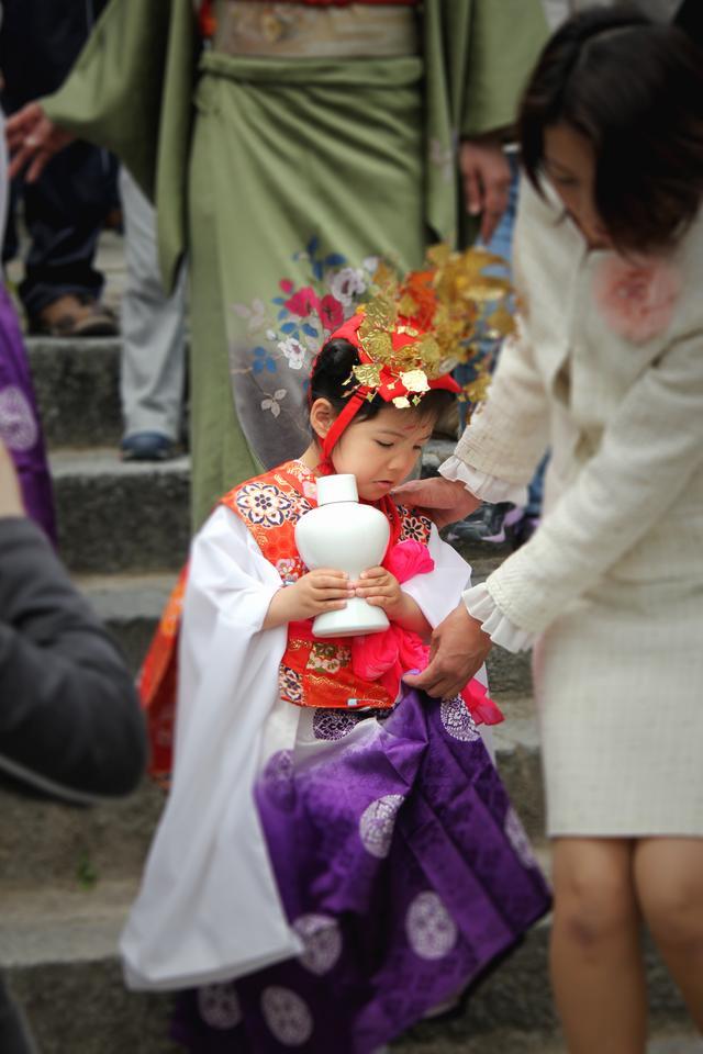 画像2: 博多によーきんしゃったね!  グローバルでディープな博多の今をリアルにレポート!  〜「九州最古の寺での藤祭りは必見やけん〜」編〜