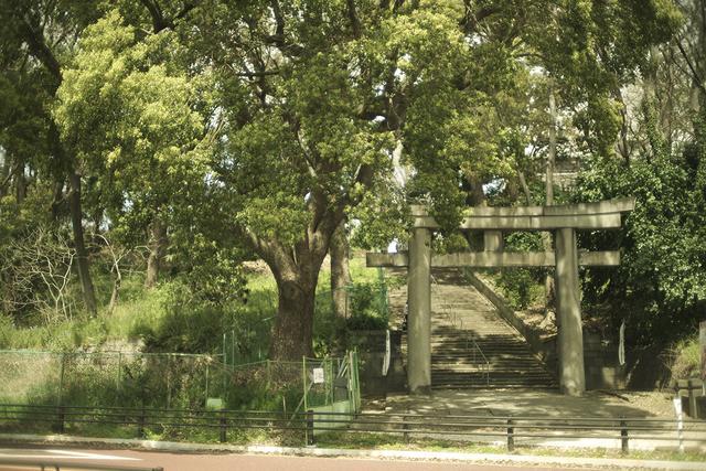 画像2: 上野で空中散歩…昭和探して江戸に迷い込んじゃった?