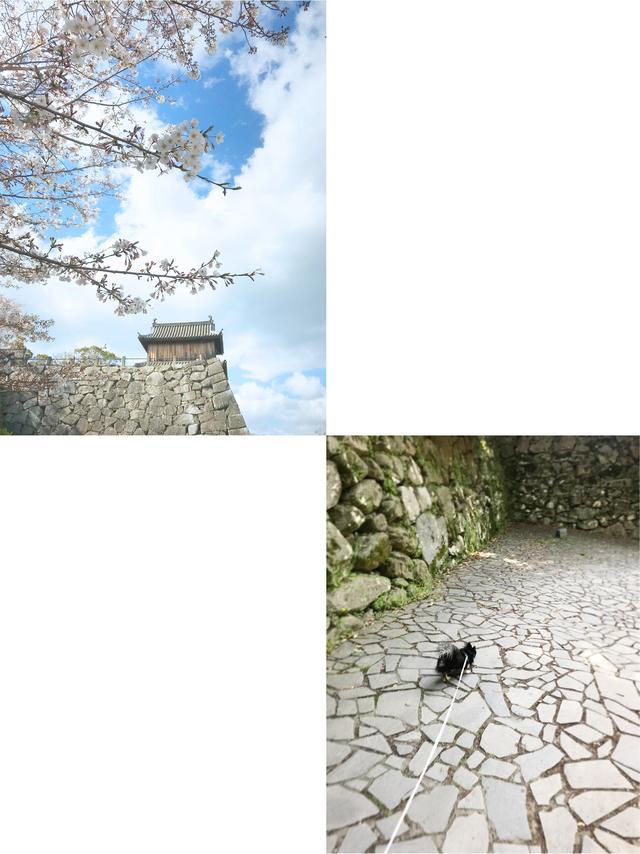画像1: 鴻臚館跡地は福岡城址内に位置しとうと