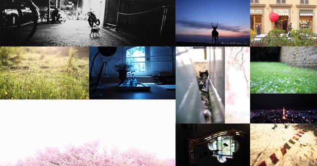 画像: REINA KANAMORI PHOTOGRAPHY | 日本 | Kanamorireina-web