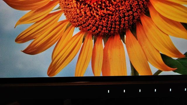 画像3: プリンターで印刷した写真がPCモニターと違いすぎる状況を解決したい