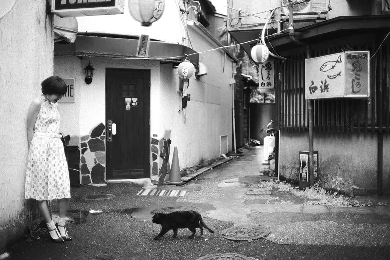 画像: 昭和歌謡を訪ね歩く「昭和という名の残照に」By 横須賀で 「そんなヒロシに騙されて・夏をあきらめて」の巻 第2回