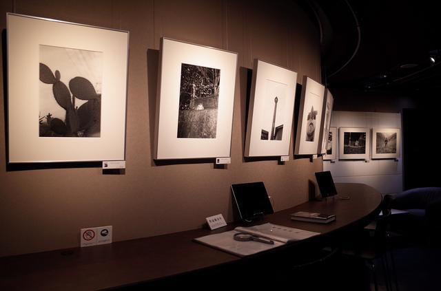 画像: 白石ちえこさんの展示作品より(写真提供:リコーイメージングスクエア銀座)