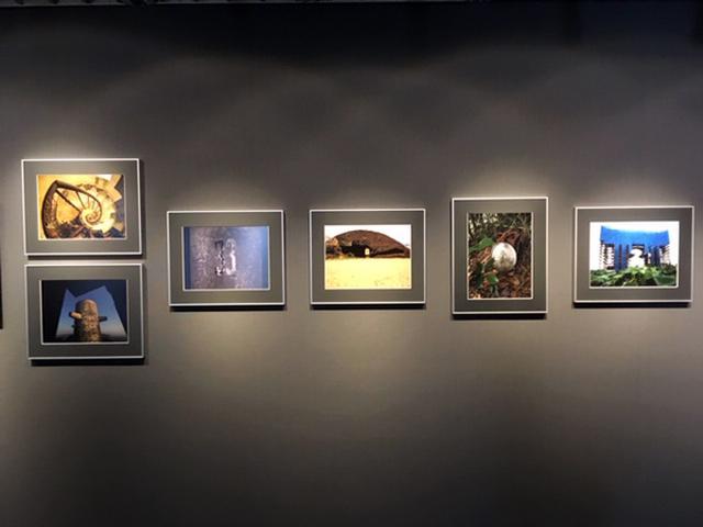 画像2: 虫上 智写真展『Unforgettable』は、新宿アイデムフォトギャラリー「シリウス」で8月29日より9月4日まで開催されます。