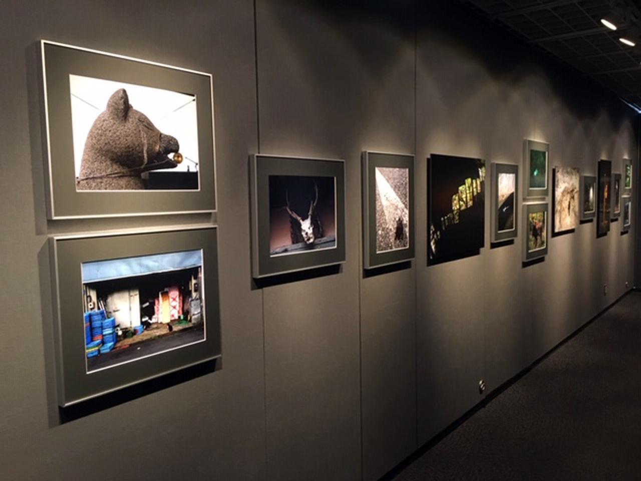 画像1: 虫上 智写真展『Unforgettable』は、新宿アイデムフォトギャラリー「シリウス」で8月29日より9月4日まで開催されます。