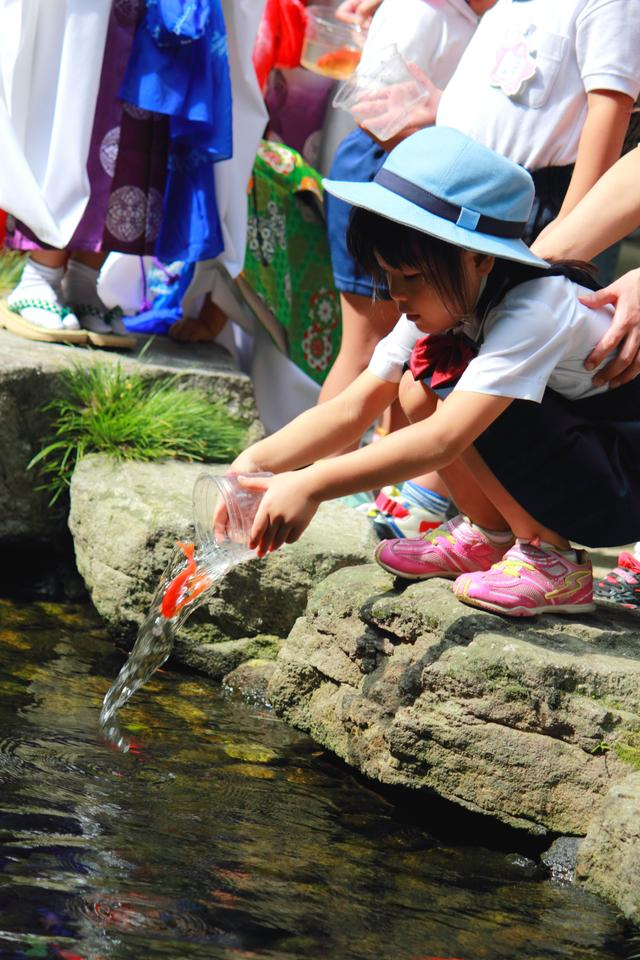 画像4: 博多三大祭のひとつ放生会