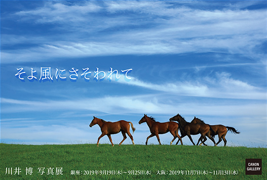 画像: キヤノン:キヤノンギャラリー 川井 博 写真展:そよ風にさそわれて