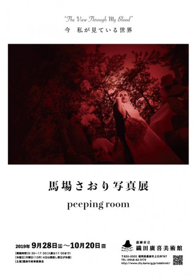 画像: peeping room 馬場さおり写真展   織田廣喜美術館