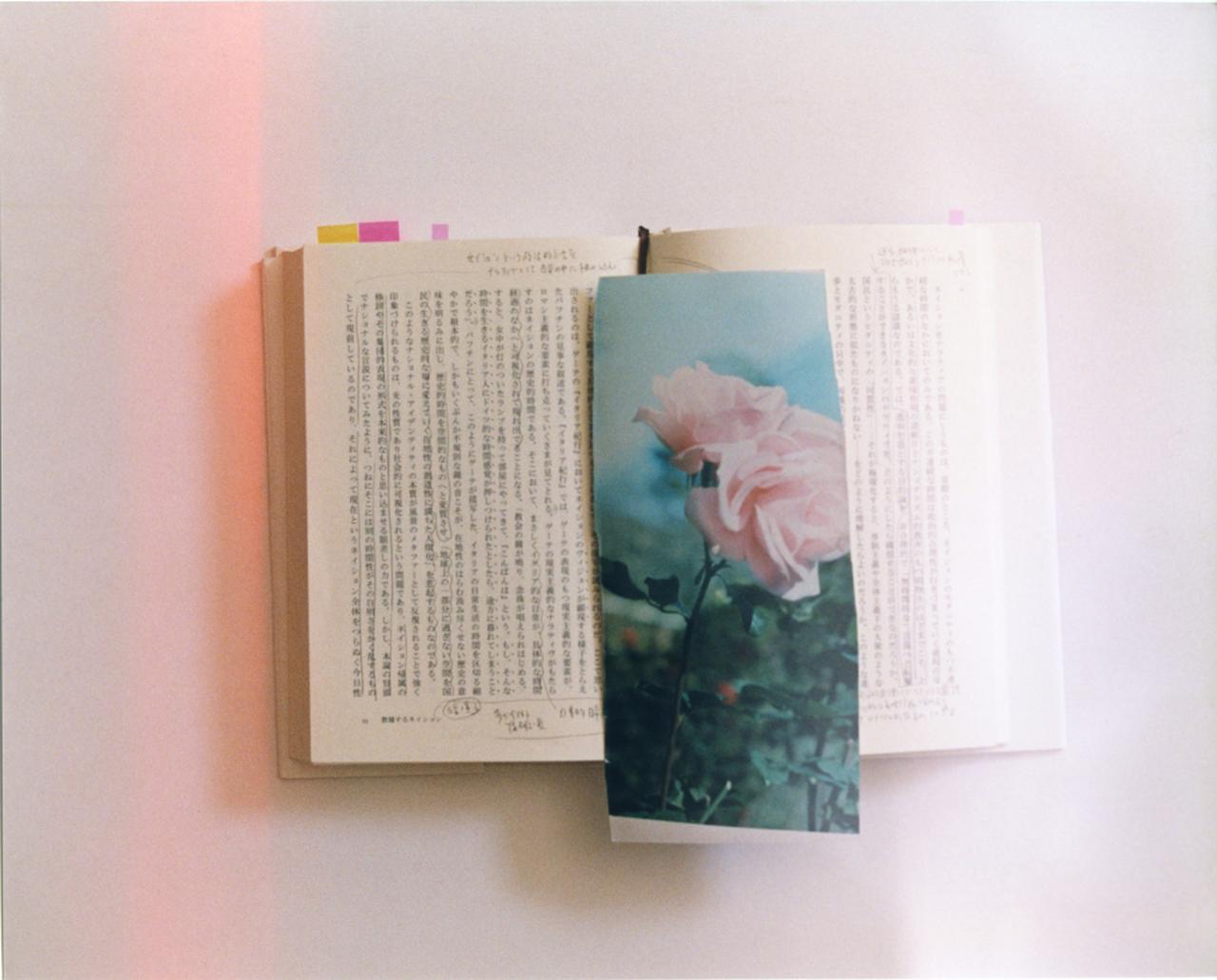 画像: 一之瀬 ちひろ 写真展 | 写真文化活動 | ニコンイメージング