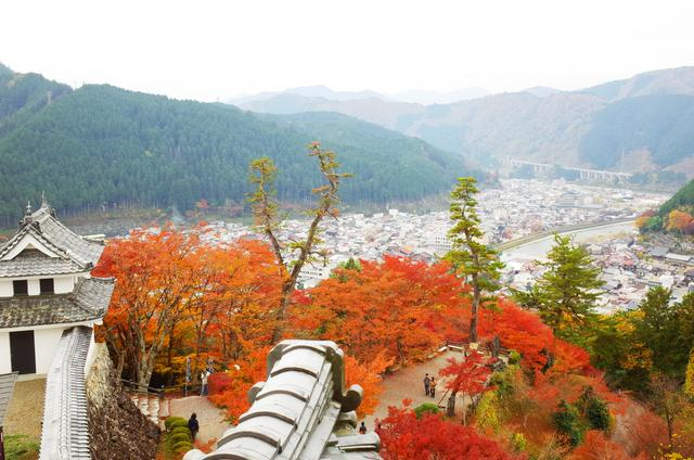 画像: 天守からは城内の紅葉や城下町を見渡せる