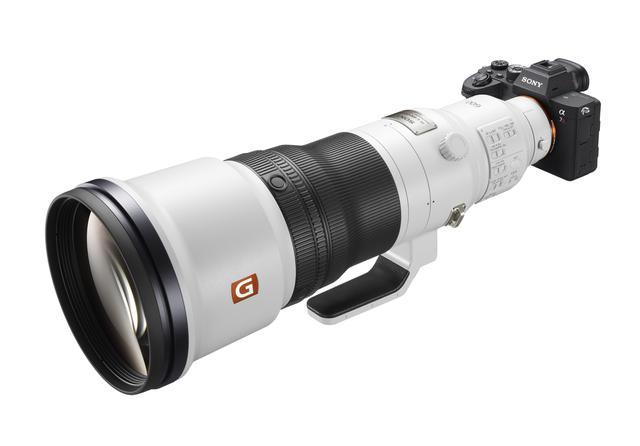 画像: 今回の作品撮影で使用した機材はα7R Ⅳ+FE 600mm F4 GM OSS