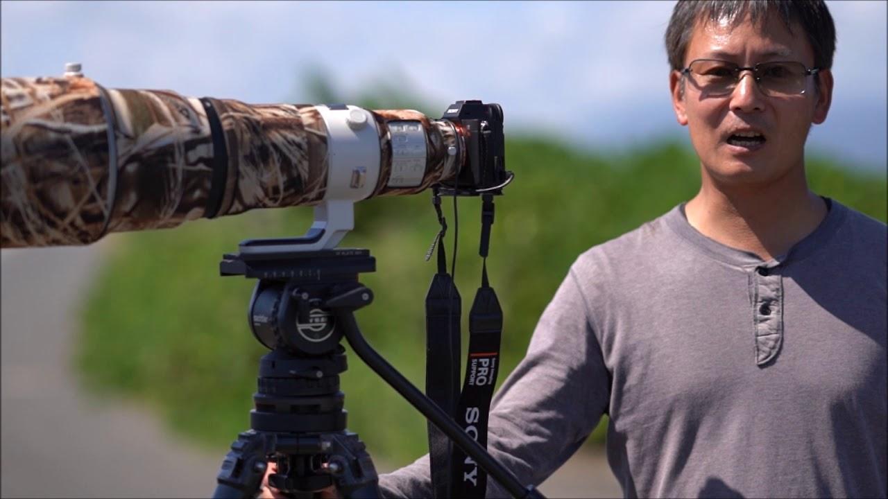 画像: 月刊カメラマン2019年11月号「ソニーα7R Ⅳで野鳥を撮る! 写真家・山田芳文」 youtu.be