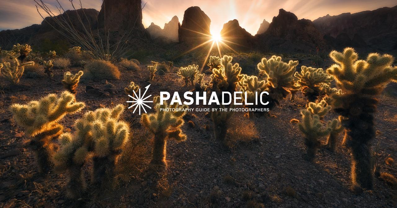 画像: PASHADELIC|パシャデリック -風景写真を3つの写真レシピで撮影しよう-