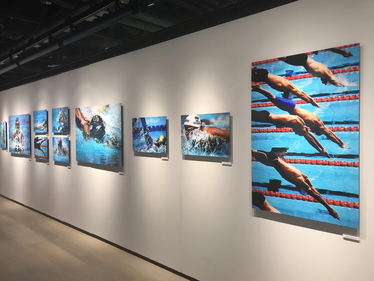 画像: 「FINA世界水泳選手権光州大会写真展」が本日(10/15)より、ニコンプラザ新宿で開催!
