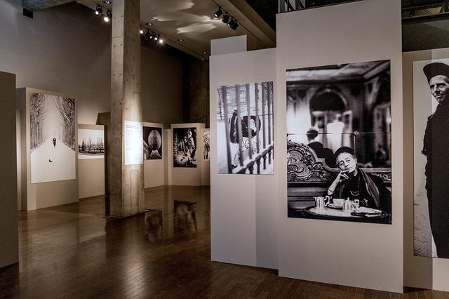 画像: 「細江英公」の展示。『王国』の沈黙の園と『ヨーロッパ 静止した時間』