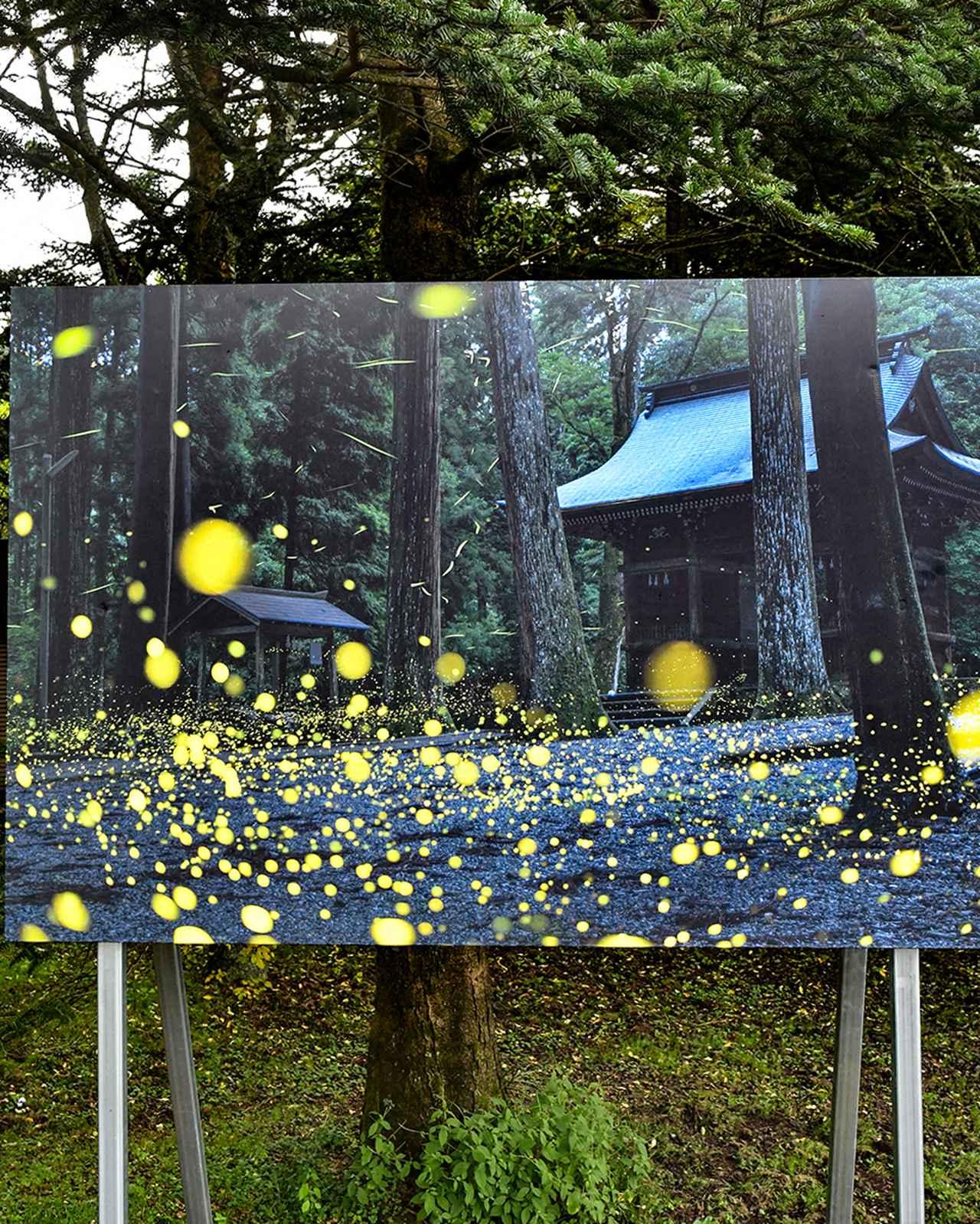 画像1: 「PHOTO KARUIZAWA」(軽井沢エリア)