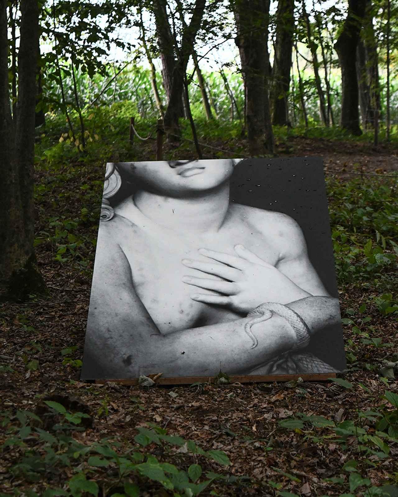 画像: 森の中には「田原桂一」のトルソ―シリーズが佇む。