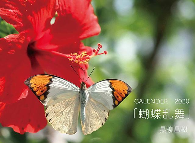 画像: カメラマン 2020カレンダーシリーズ 14 黒柳昌樹 「蝴蝶乱舞」-モーターマガジン Web Shop