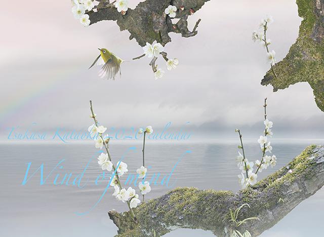 画像: カメラマン 2020カレンダーシリーズ 12 片岡司 「Wind of mind」-モーターマガジン Web Shop